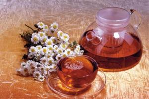 Лекарства и народные средства для печени
